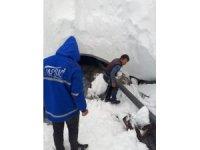 8 metre karın altındaki içme suyu hattına ulaşarak Gülek'e takviye su sağladılar