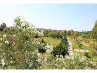 Toroslar'ın parkları kır çiçekleriyle renklendi