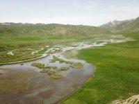 Faraşin Yaylası ilk defa doğa fotoğrafçılarını ağırladı