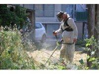 Kartal Belediyesinden yaz temizliği seferberliği