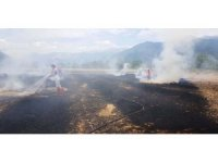 Seydikemer'de anız yangınında 80 saman balyasını yandı