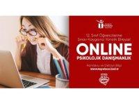 Online danışmanlık desteği