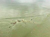 Elazığ'da kaçak balık avı ile mücadele