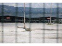 Eskişehir Canlı Hayvan Pazarı normalleşmeyi bekliyor