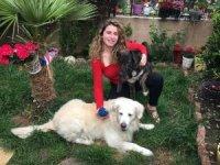 Çengelköy'de dehşet: Oyuncu Gamze Topuz'un köpeklerine çivili kemik attılar