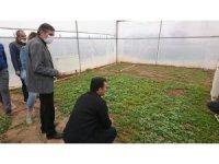 Yazıhan'da kırmızı pul biber yaygınlaştırılıyor