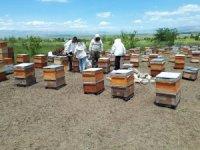 MŞÜ'den tarım ve hayvancılığı geliştirme çalışması