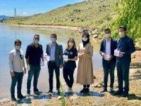 AK Parti Gençlik Kolları, göletlere bin adet sazan balığı bıraktı
