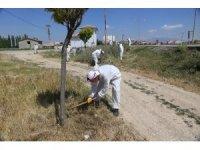 Karaman Belediyesinden temizlik