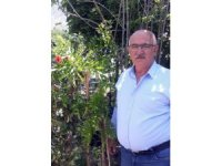 """Çevre Araştırmacısı Yaşar: """"Tortum şelalesi ve çevresinde 25 odunsu tür yaşıyor"""""""