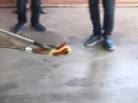 Amasya'da aracın içine kaçan yılanı itfaiye çıkardı