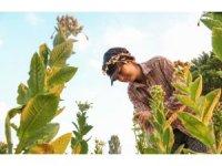 Bayburtlu çiftçiler afet sigortası konusunda uyarıldı