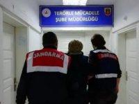 Terör örgütü operasyonunda Roma sikkeleri ele geçirildi