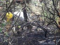 Gelibolu'daki yangın söndürme çalışmalarına katılan Şuhut ekibi ilçeye döndü