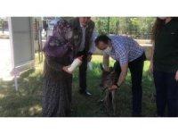 Başkan ormanda bulduğu geyik yavrusunu Milli Parklara teslim edildi