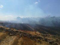 Manyas'ta anız yangını korkuttu