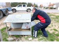 """Başkan Kavuş: """"Sokak hayvanlarını bir an olsa bile ihmal etmiyoruz"""""""