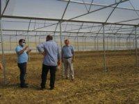 Çiftçiler yaz seralarıyla üretime destek veriyor