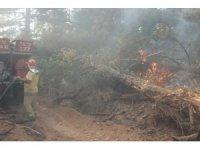 Yenice orman yangınına ağır iş makineleriyle müdahale ediliyor