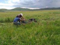 Kars'ta çiftçilerin ot biçme mesaisi sürüyor