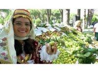 Toprak Mahsulleri Ofisi kuru incir alımına devam edecek