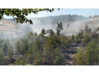 Halfeti'de çıkan orman yangını 16 saatte söndürüldü