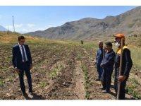 Vali Yardımcısı Kumbasar, hayata geçirilen projeleri denetledi