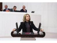 AK Parti'li vekilden CHP'li vekile havaalanı cevabı