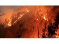 İtfaiyeden orman yangını uyarı