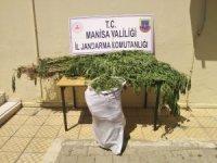 Manisa'da 12 kilo kubar esrarı çuvalla taşırken yakalandılar