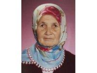 Dolaşmaya çıkan yaşlı kadın kayboldu