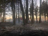 Kastamonu'da balya makinesinden sıçrayan kıvılcım ormanı yaktı