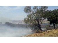 2 bin dönüm anız kül oldu, yangını görüntüleyen çiftçi muhabirliğe özendi