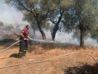 8 helikopter 1 uçak yangına müdahale ediyor