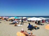 Zabıta ekipleri plaj fırsatçılarına göz açtırmıyor