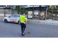 İstanbul'da motosikletlinin kaputa uçtuğu kaza kamerada