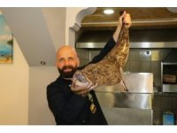 Akdeniz'in Fener balığı yolunu kaybedince Karadeniz'de ağlara takıldı