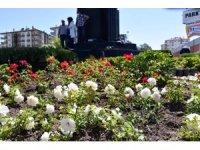 Aksaray'da caddeler çiçeklerle süslendi