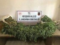 Nevşehir'de 2 kilo esrar ele geçirildi