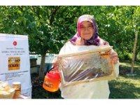 Organik balın Hanım ağası yılda 1.5 ton bal üretiyor