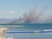 Edremit Körfezi'nde yangın
