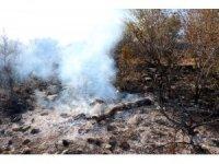 Yozgat'ta çıkan ot ve çalılık yangını korkuttu