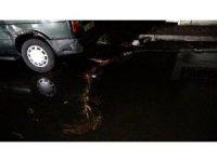Adana'da fırtınada elektrik telleri koptu, ağaç aracın üzerine devrildi
