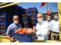 Bayramiç'te domates hasadı şenliği düzenlendi