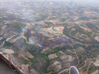 Antakya'da zeytinlik yangını