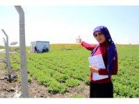 Zübeyde'nin çiftçilik hayalini kabusa çevirdiler