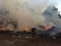 Mersin´de enstitü bahçesinde 3 ayrı noktada yangın çıktı