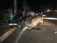 Lüks otomobil palmiye ağacını yıktı