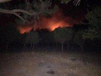 Kazdağları'ndaki yangını büyümeden söndürüldü