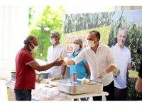 Muratpaşa'da mısırlar menüye eklendi
